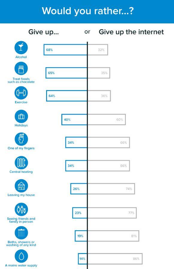 internet survey