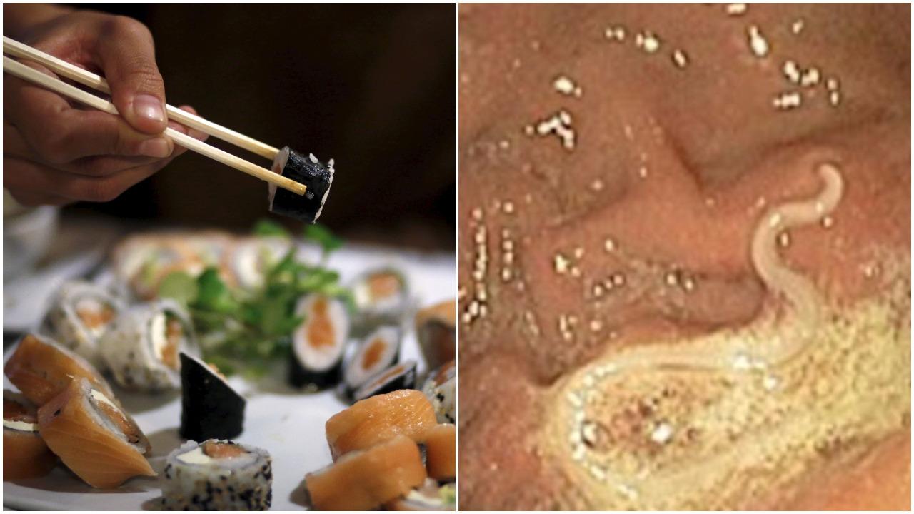 sushi worm