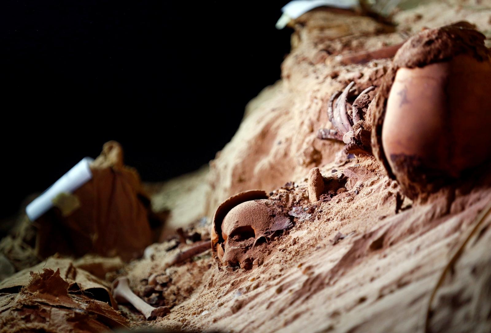 Egypt mummies