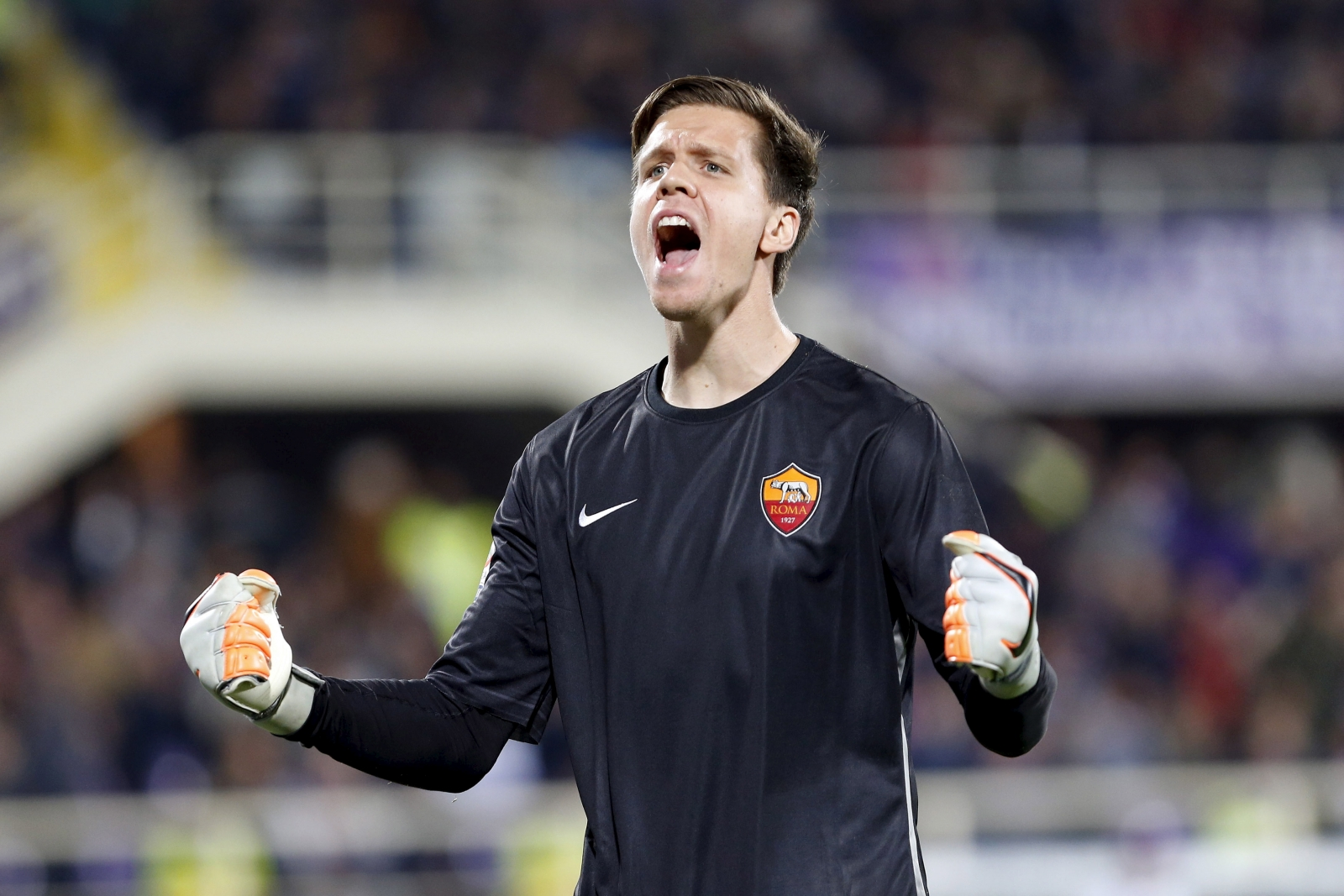 Szczesny admits he would love Arsenal return