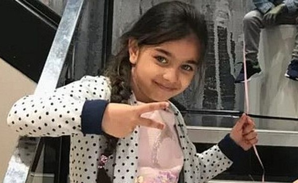 Girl missing in stolen vehicle is found safe and well