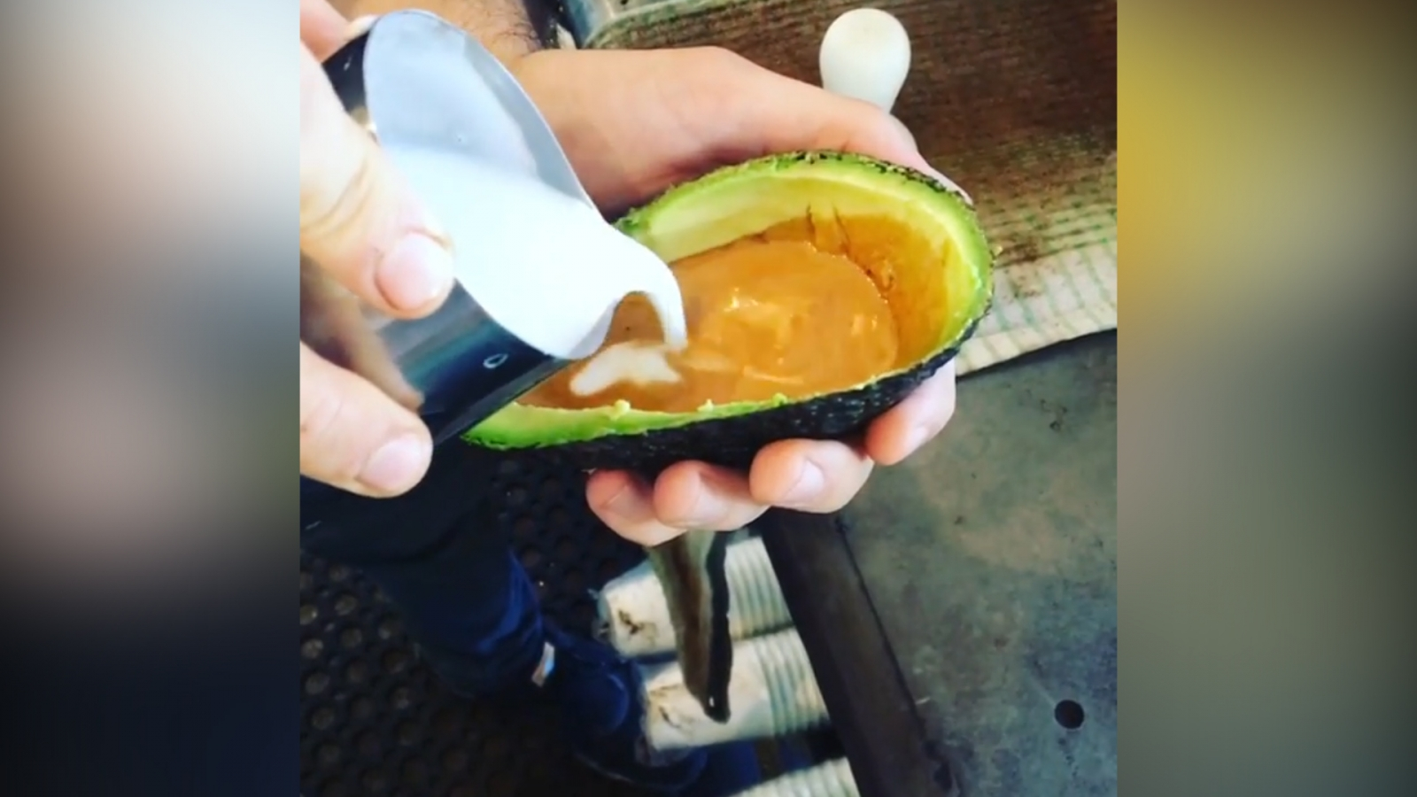 Avolattes take internet by storm in newest hipster craze
