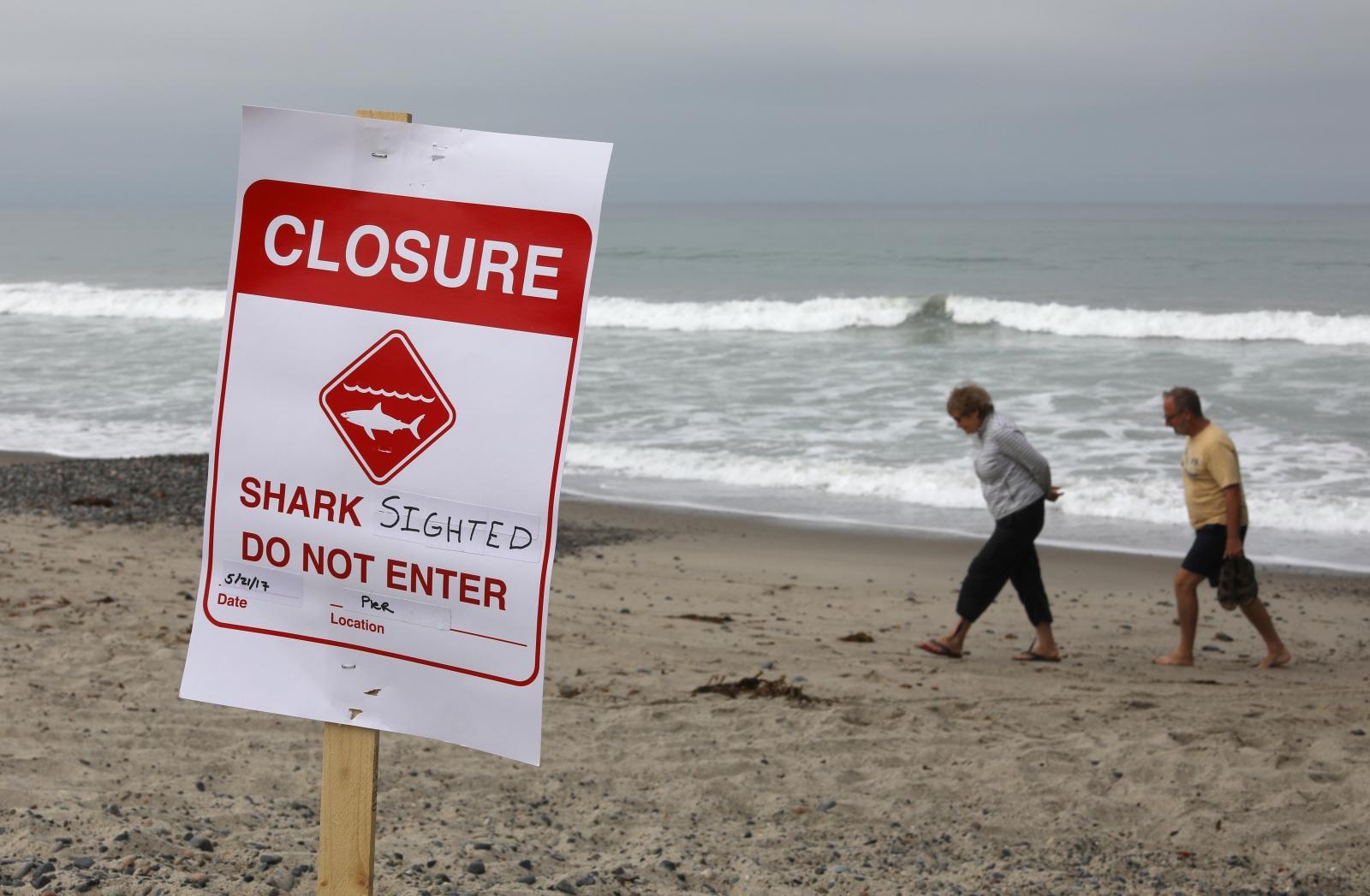 Shark sighted sign on San Clemente beach