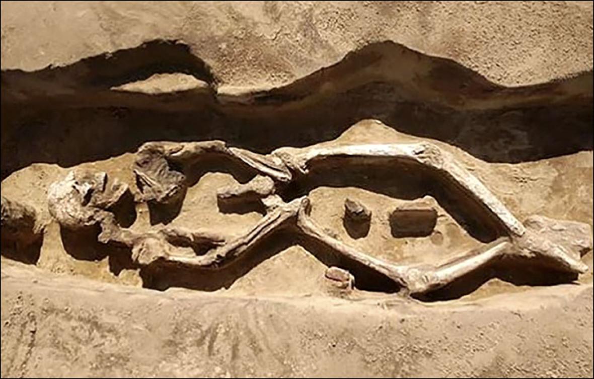 skeleton siberia