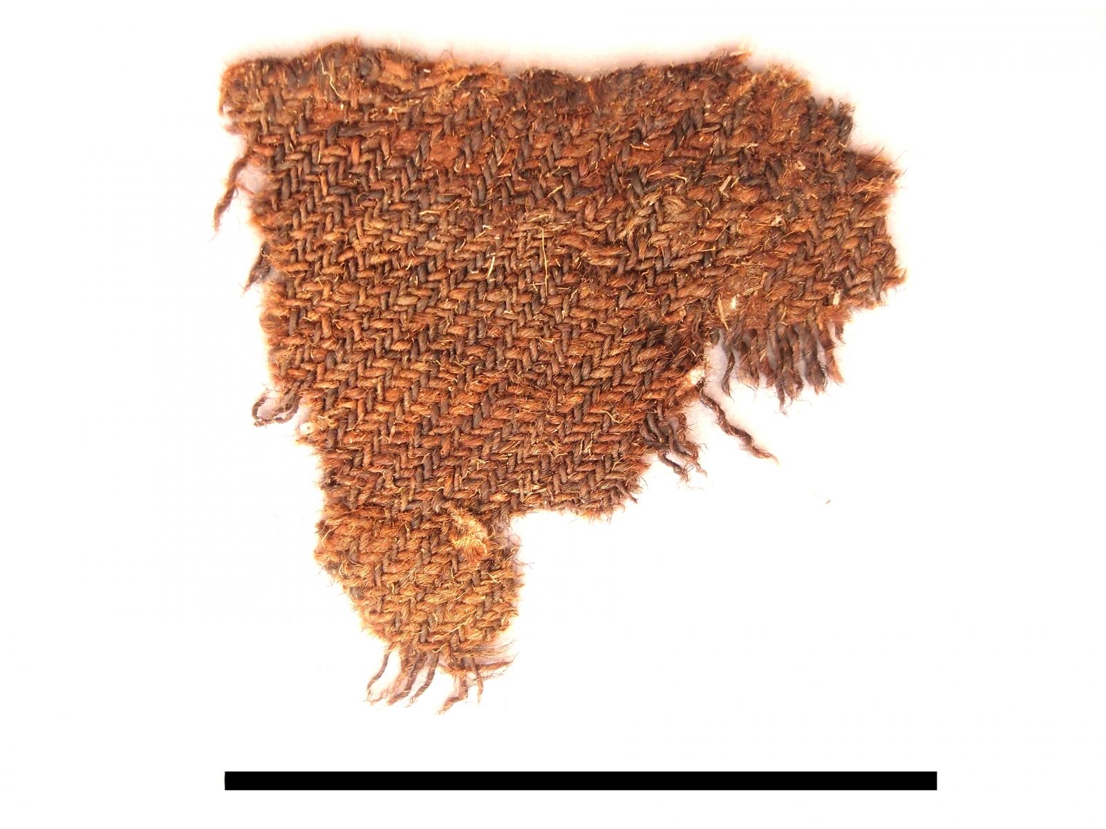 Bronze Age wool