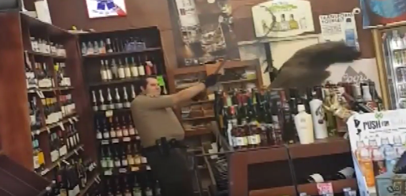 peacock damages liquor worth $500 in California store