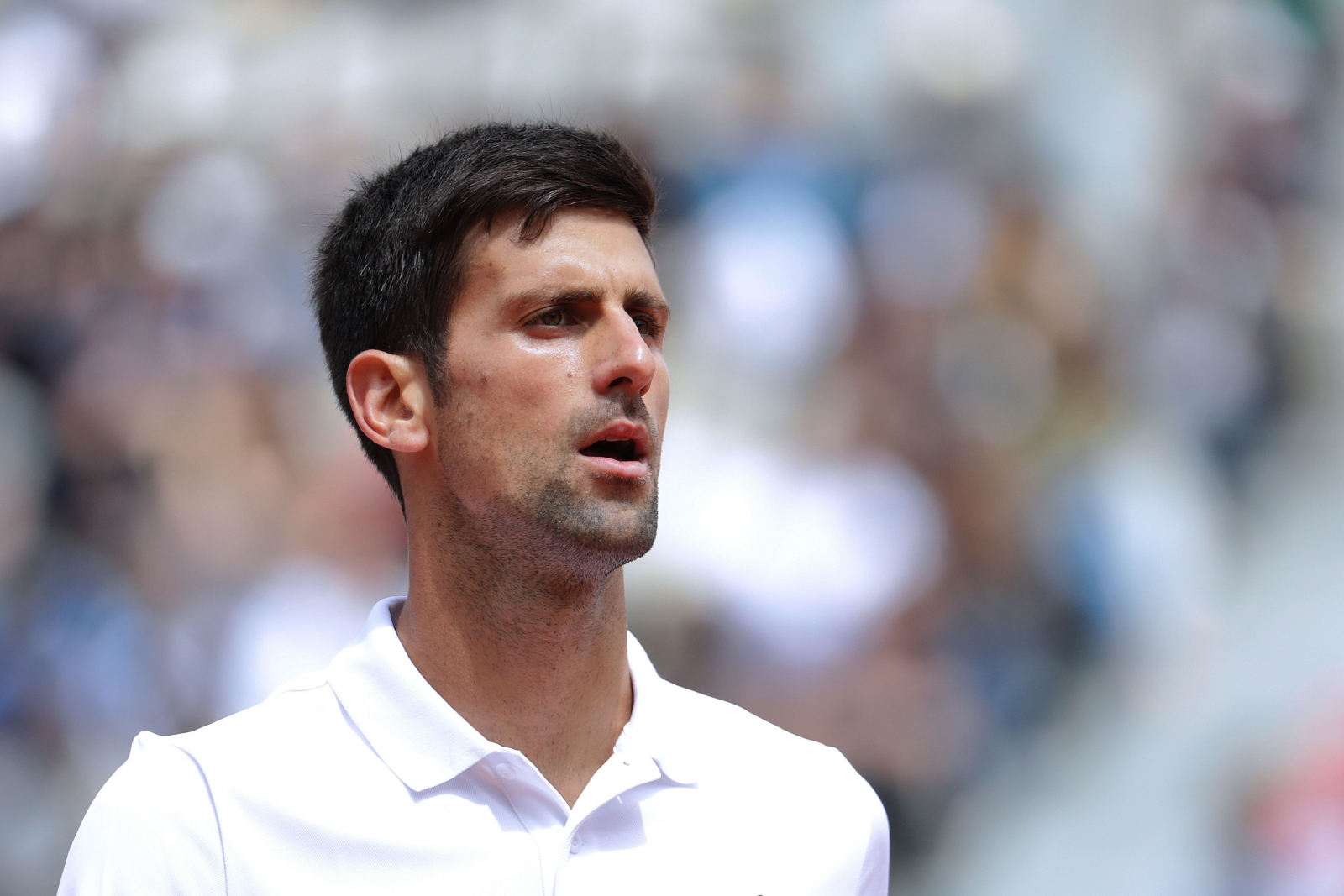 Djokovic's title defense ends