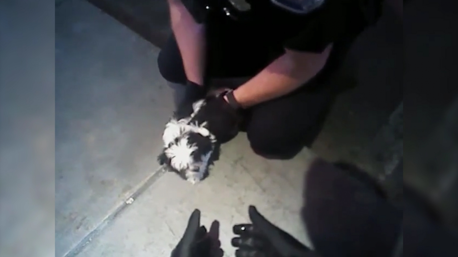heroic-police-officers-rescue-choking-puppy