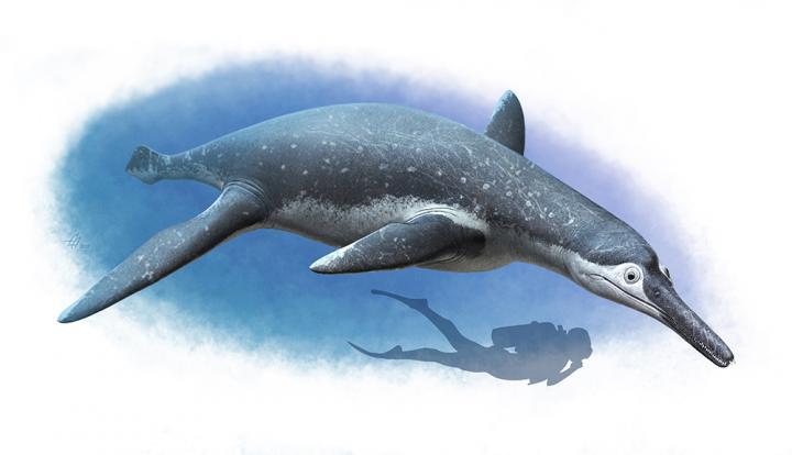 Pliosaur