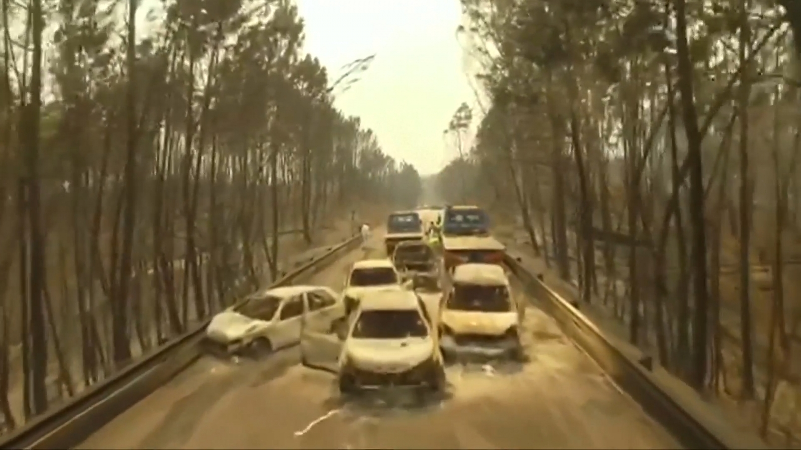 drone-footage-shows-aftermath-of-portugals-deadliest-forest-fire