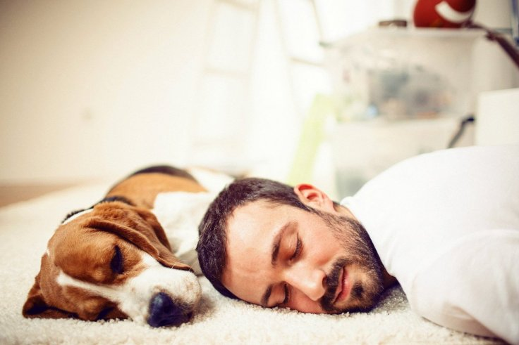 UK heatwave sleep hacks