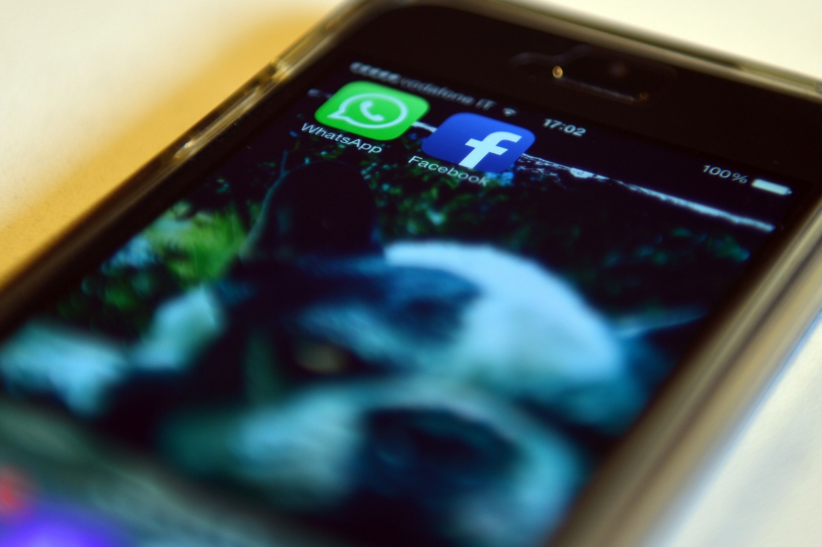 Facebook and WhatsApp applications