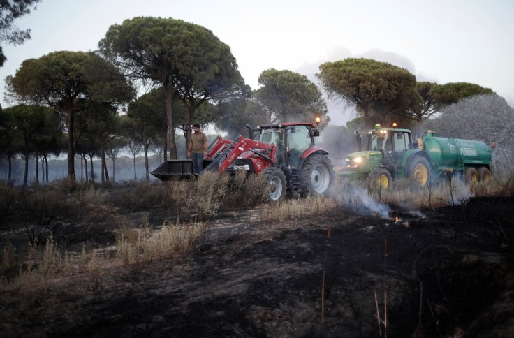 spain donana national park forest fire