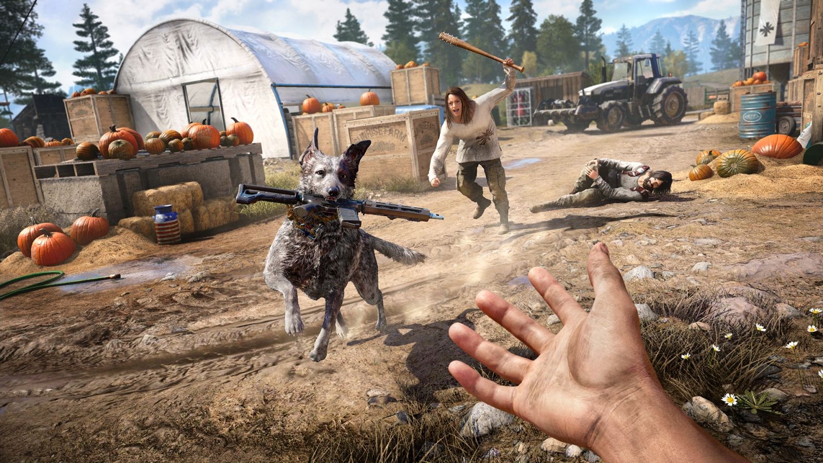 Far Cry 5 boomer dog
