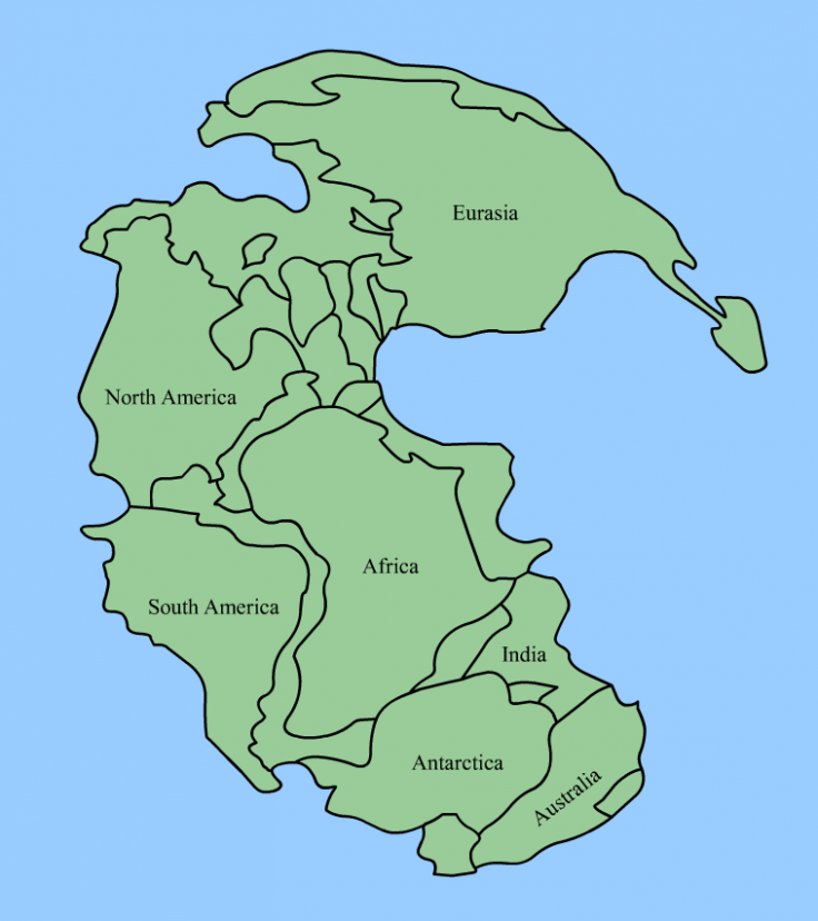 Pangea mass extinction