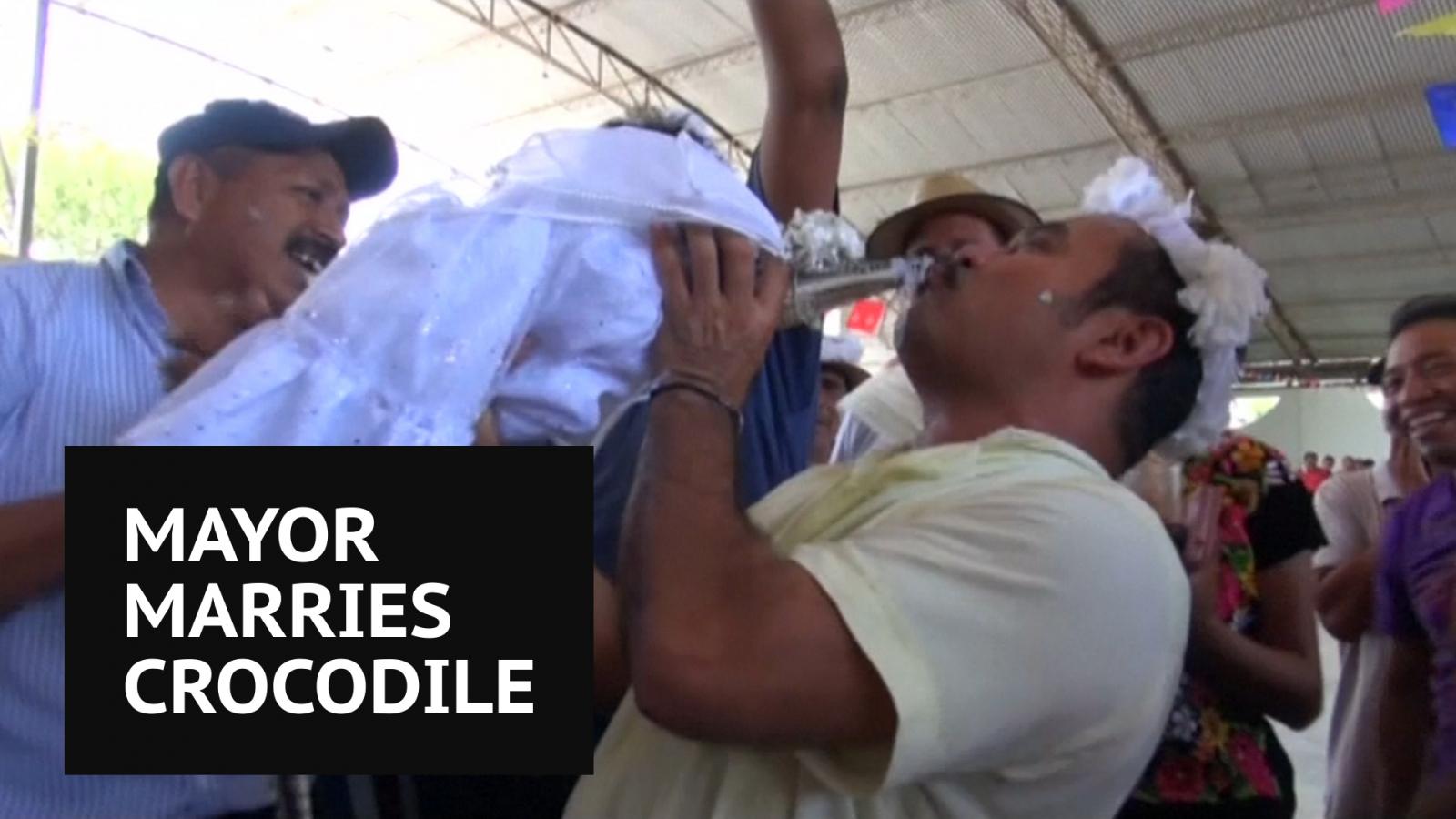 Mexican Mayor Weds Crocodile Called 'The Princess'