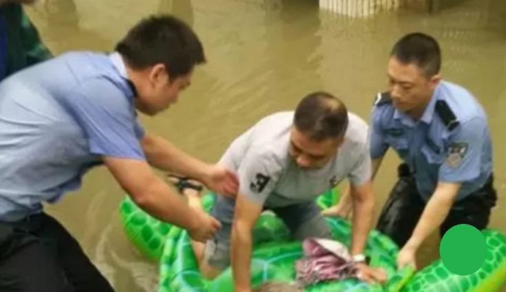 China floods turtle