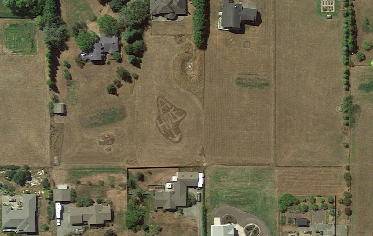 Google Maps A-Hole garden carving