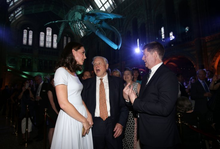 Kate Middleton, David Attenborough, Michael Dixon