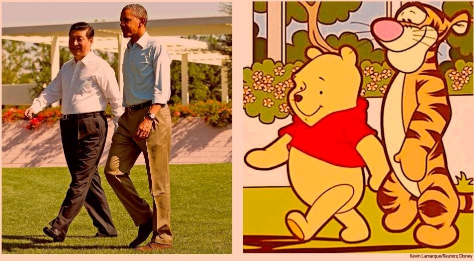 Winnie-Xi comparison