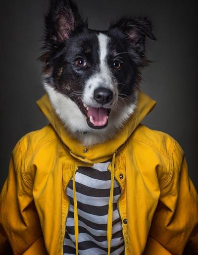 Sandra Mller Dog People