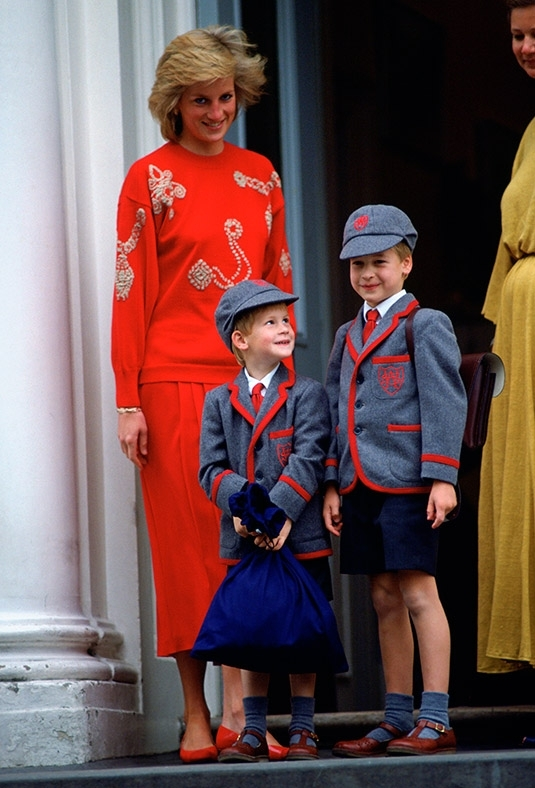 Princess Diana and sons