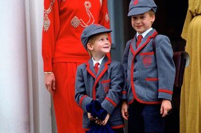 Princess Diana and sons