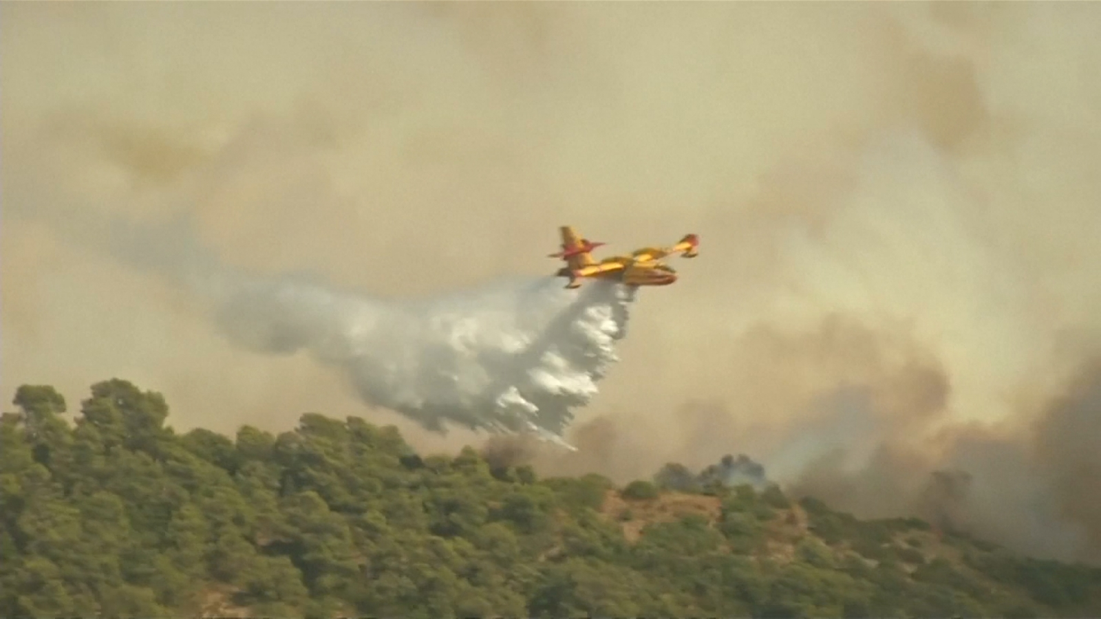 Massive fires destroy forests in southern France and Corsica