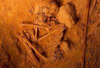 DNA ancient bones