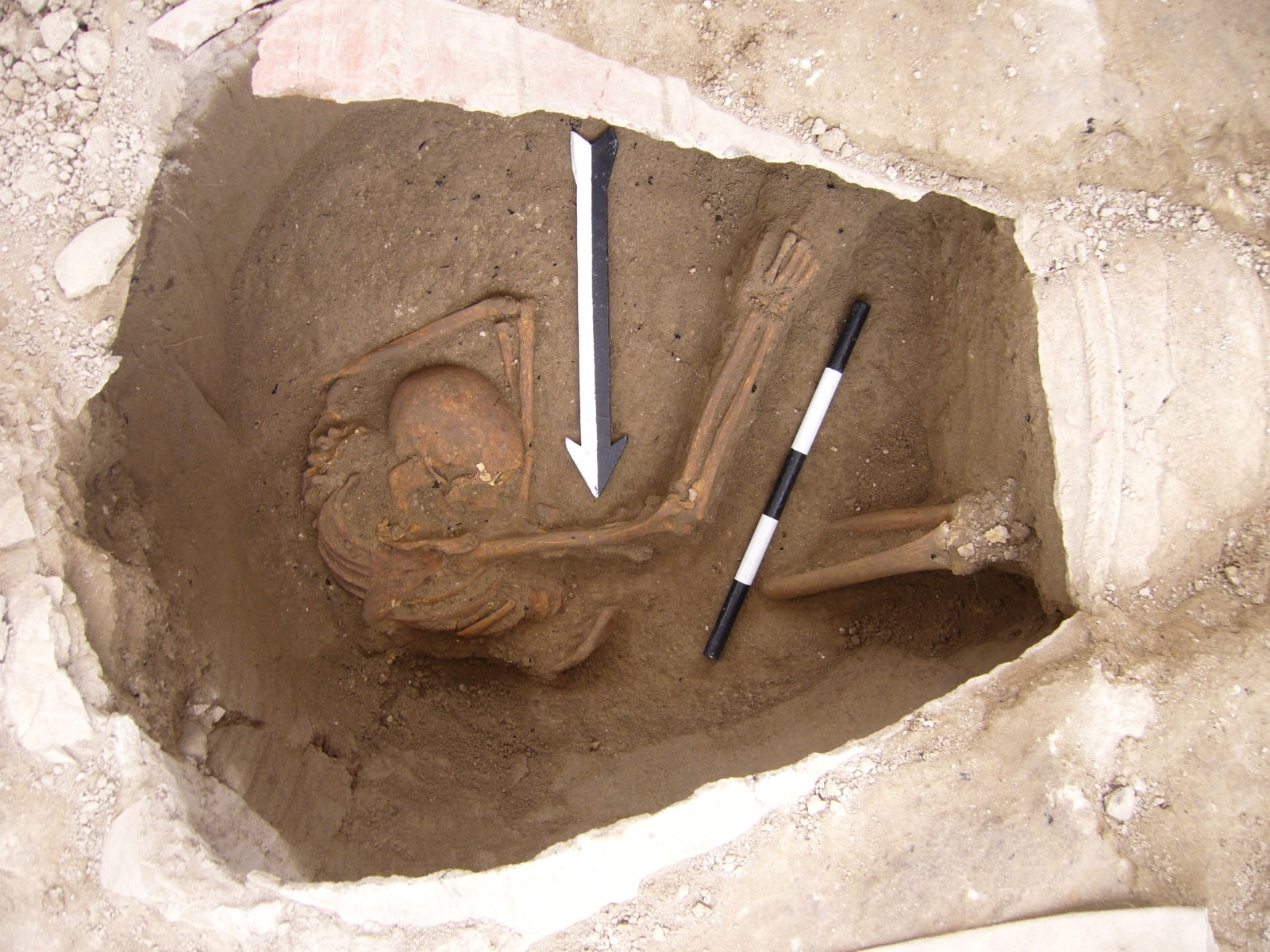 DNA Samples Show Biblical Canaanites Escaped Extermination