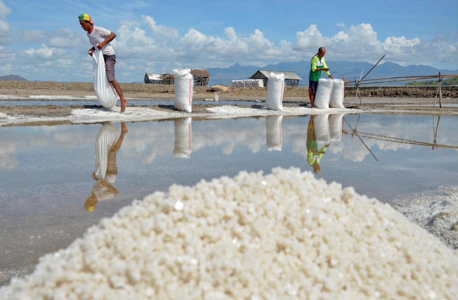 Indonesia salt scarcity