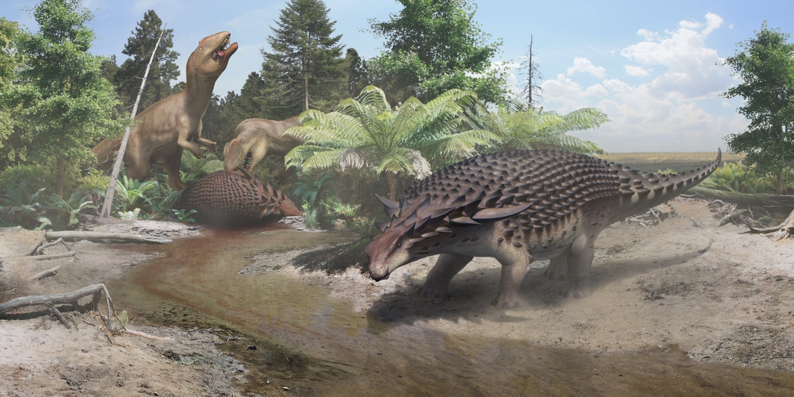 This newly discovered armoured dinosaur had to hide from bigger, meaner dinos