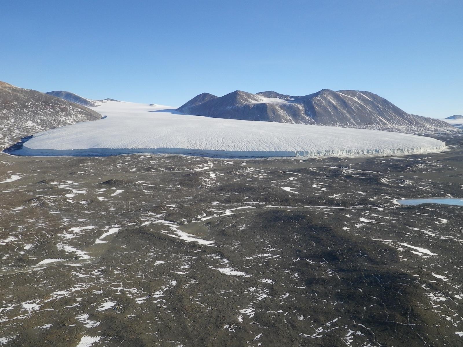 Polar desert