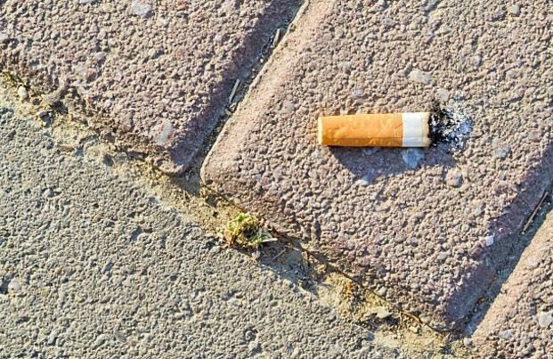 Cigarette butt pavement sidewalk