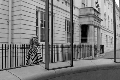 British Life Photography Awards