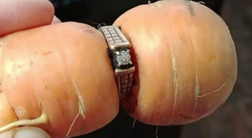 Ring on a carrot