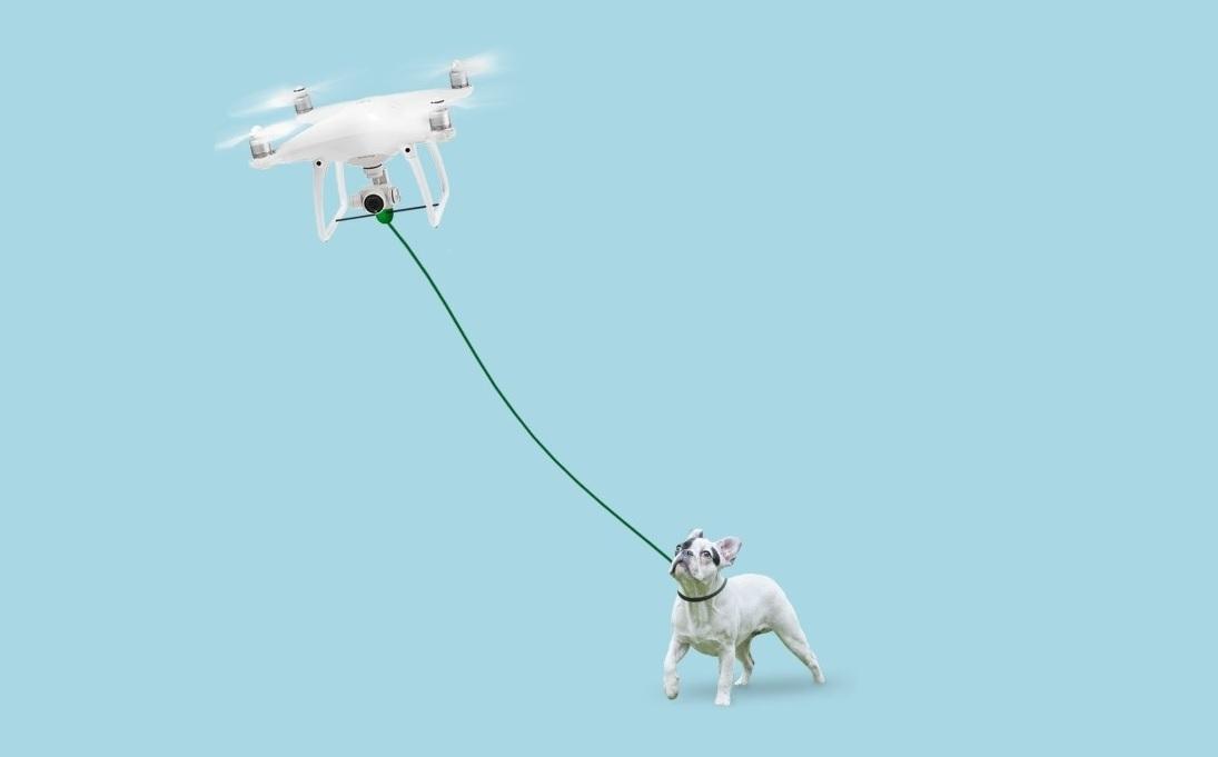 Dog walking drone
