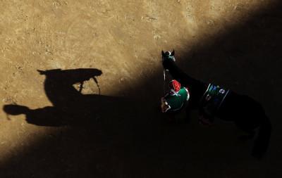 Palio di Siena horse race