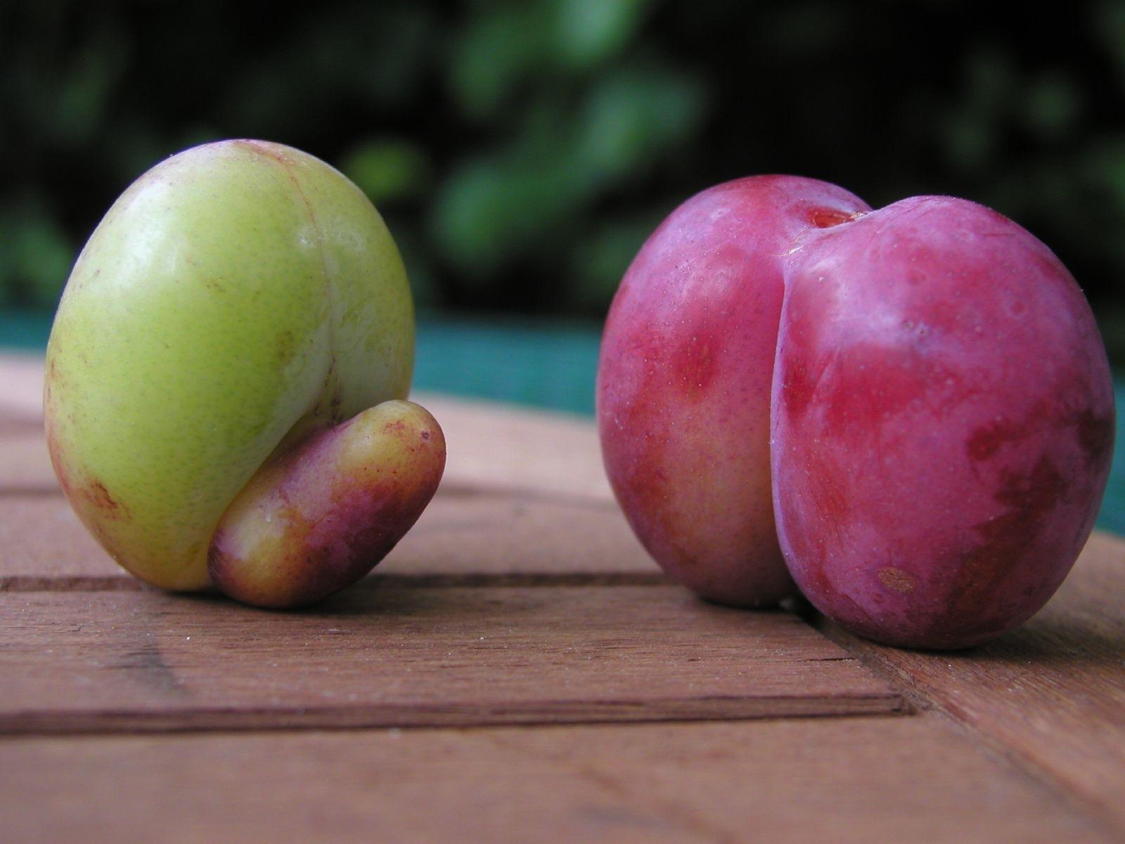 Naughty fruit