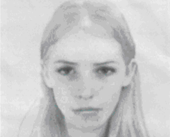 Sexy E-fit robbery police