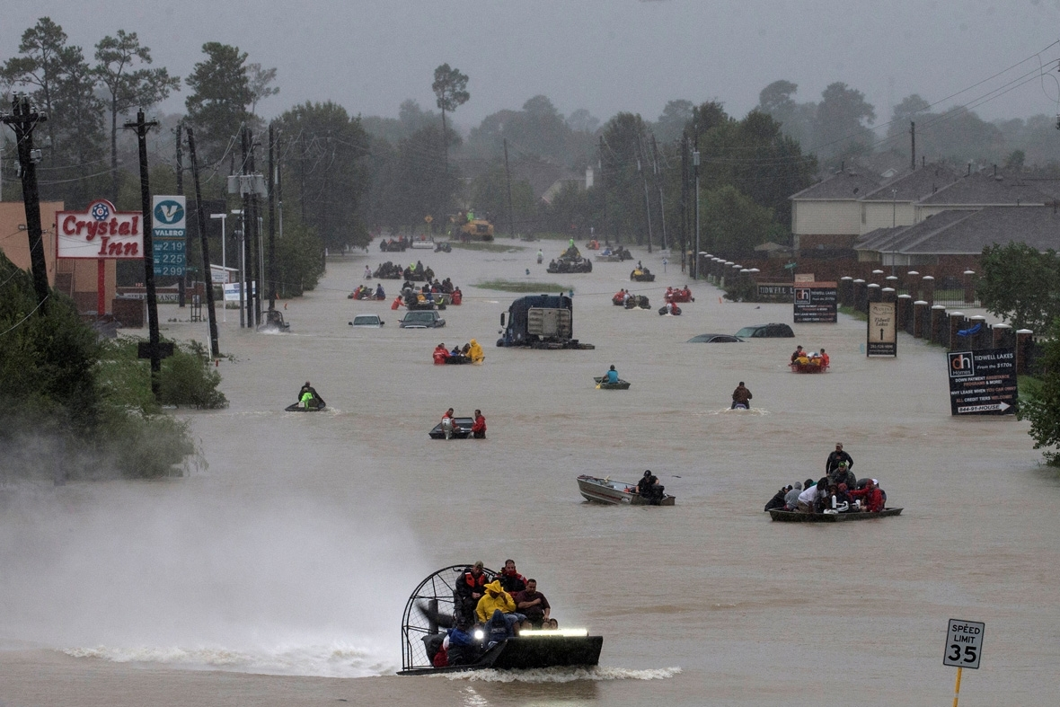 IBTPOTY2017 Pictures of the week