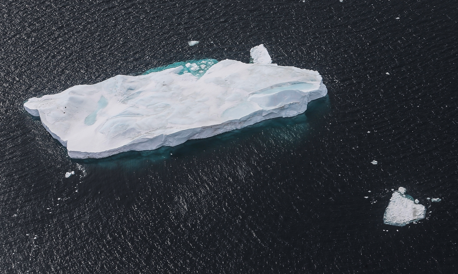 antarcticas-hidden-caves-could-be-home-to-scores-of-undiscovered-plants-and-animals