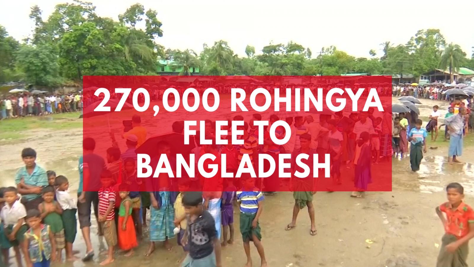 270000-rohingya-flee-to-bangladesh-after-weeks-of-violence