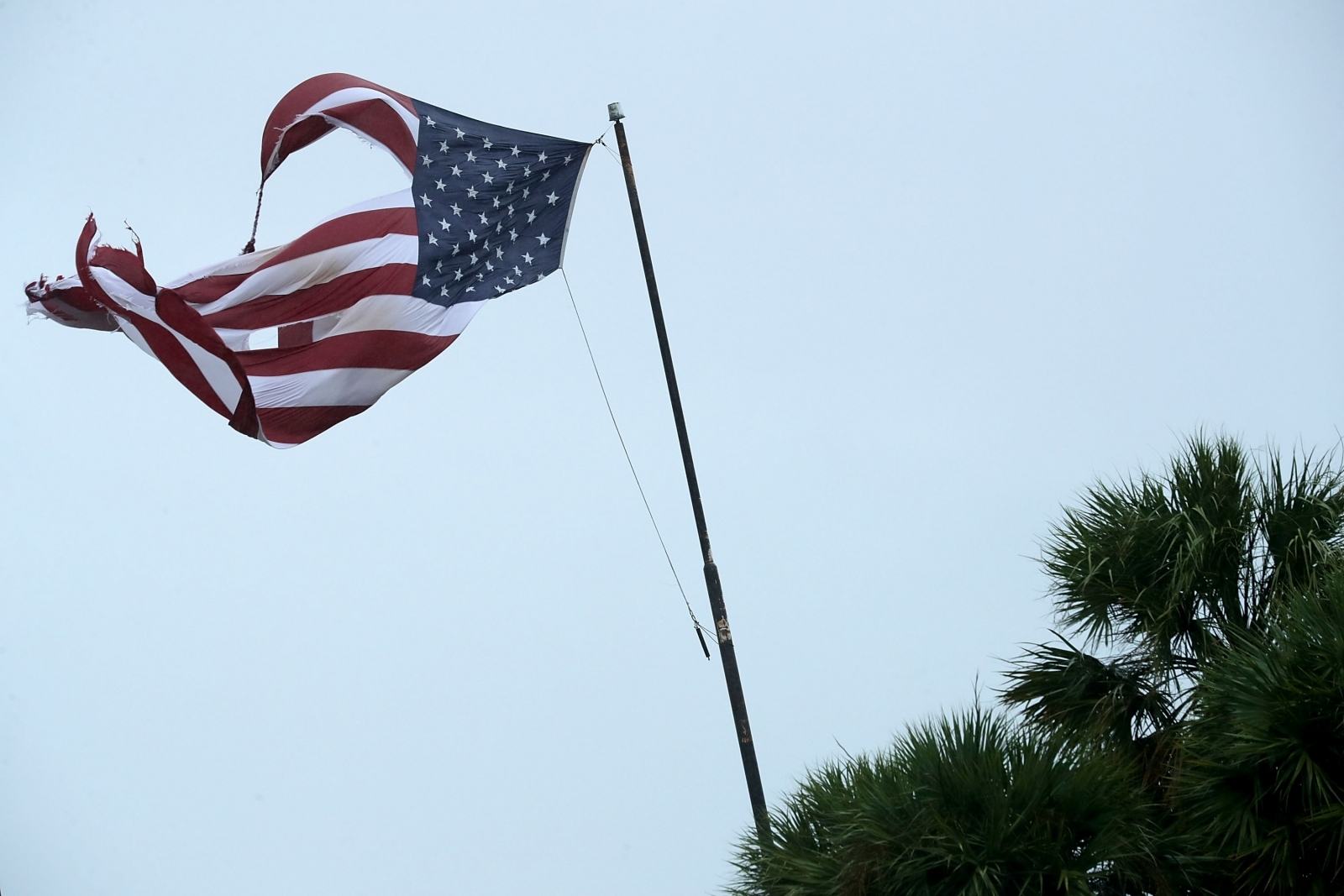 US flag ripped by Hurricane Irma