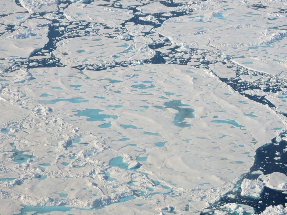 Icebridge