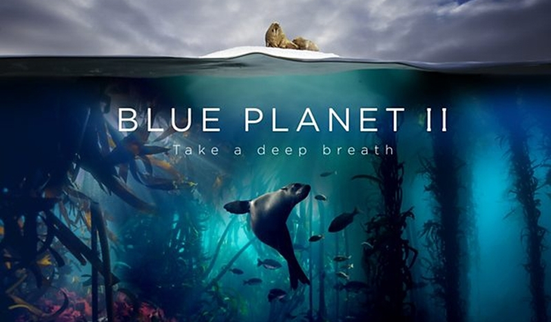 Radiohead and Hans Zimmer collaborate on original music for Blue Planet ll
