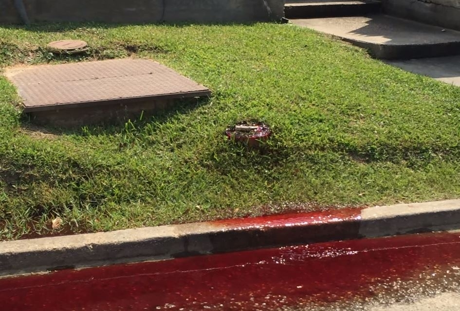 Funeral home leaks blood onto street