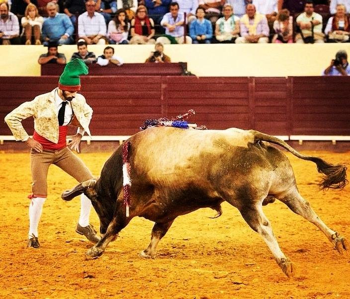 Fernando Quintella bullfighter