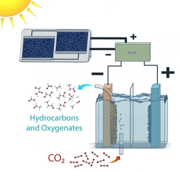 Scientists Harness Power Of Photosynthesis To Convert