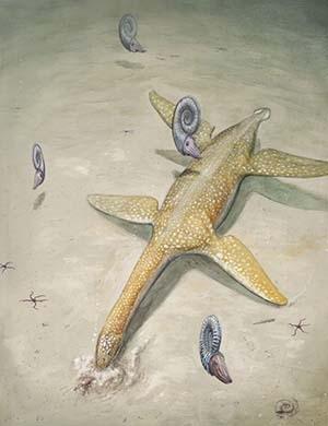 Jurassic sea monster - Arminisaurus schuberti
